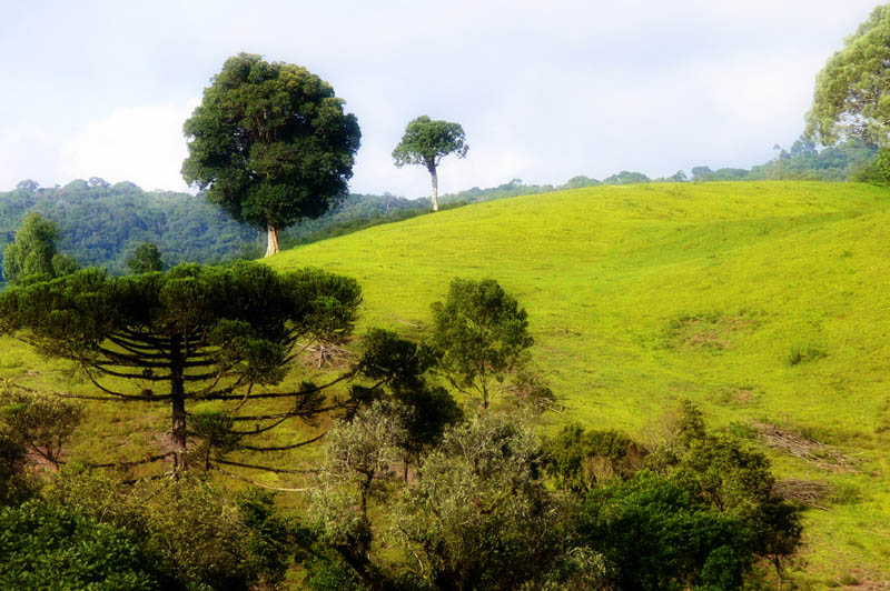 countryside hill-landscape1300296