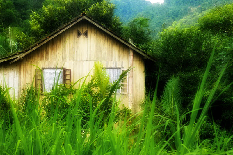 countryside wood-house1300322